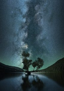 Image of a starry sky with a tree in silhouette over water.